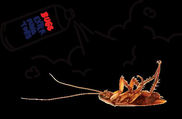 bugs-exterminators-img